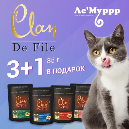 Clan de File для кошек 3+1